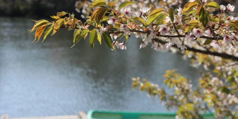 雲仙天草国立公園 白雲の池