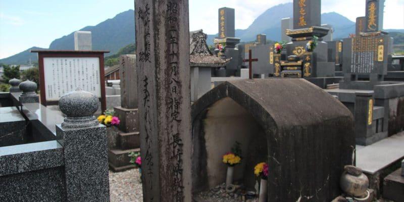まだれいなの墓