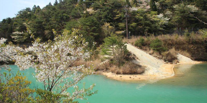 おしどりの池 別所ダム